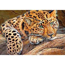 Картина круглыми камнями Леопард 24*34