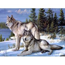 Картина для рисования камнями Волки 28*21 стразами Diamond painting Алмазная вышивка алмазами мозаика волчья пара