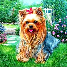 Картина для рисования камнями щенок 20*20 стразами Diamond painting Алмазная вышивка йоркширский терьер