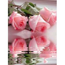 Картина для выкладывания камнями Розы отражение в воде 30*40