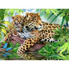 Картина для выкладывания камнями Леопарды 30*24