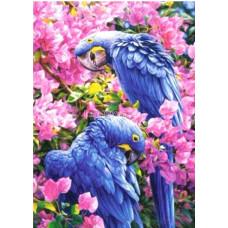 Картина для выкладывания камнями Синии попугаи 30*40см