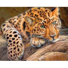 Картина круглыми камнями Леопард 20*30